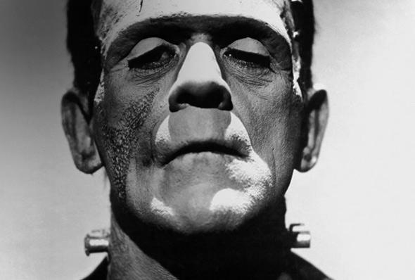 «Al dottor Frankenstein interessa solo la vita umana: la sua distruzione e la sua creazione»