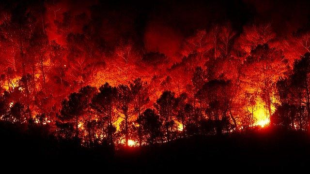 incendio boschivo per gli incendi australia