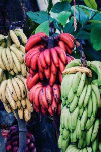 Esistono molte varietà di banane, oltre alla Cavendish.