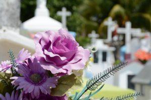 Cambiare l'acqua ai fiori, di Valérie Perrin - Alcuni fiori al cimitero