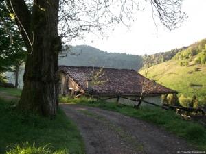Un tuffo nel passato, sospesi tra lago e cielo: la Valle di Fonteno