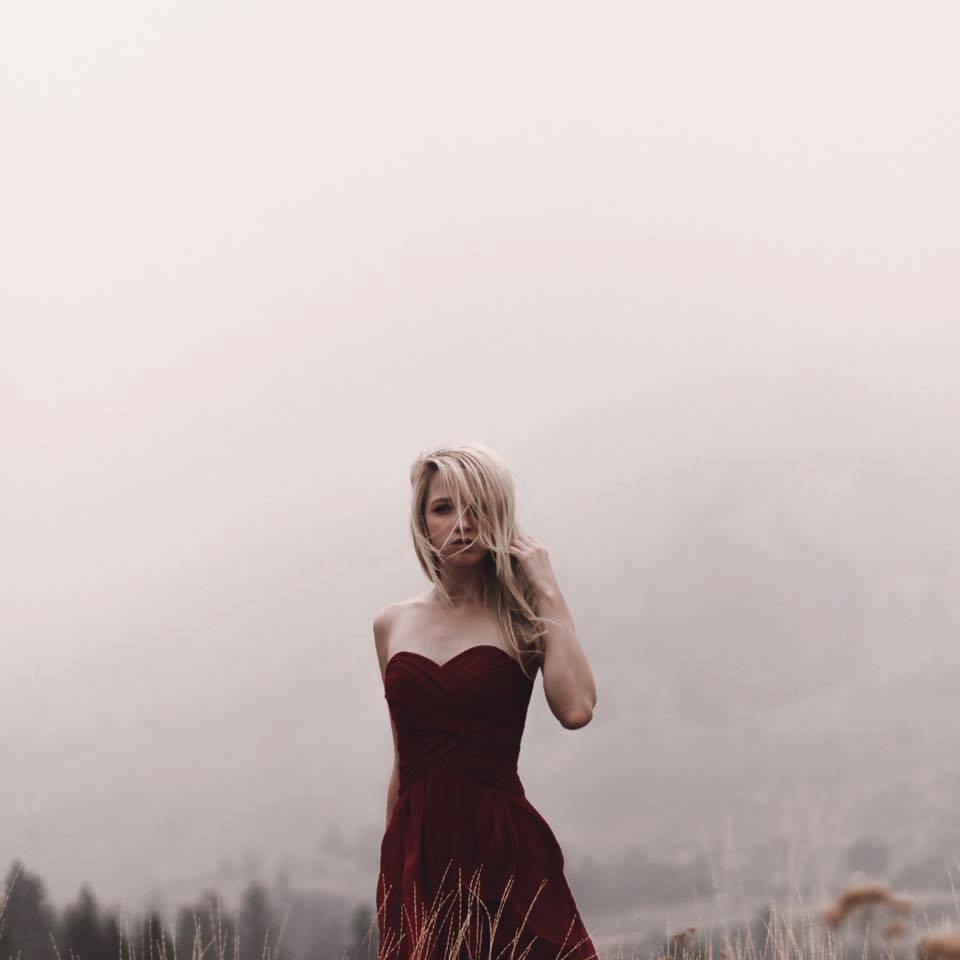 Un pettirosso sega la foschia – A robin redbreast saws the mist