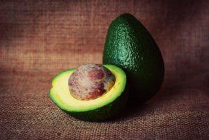 Coltivare avocado – Un viaggio tra danni ambientali e opportunità