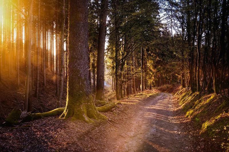 Escursionismo – Tre idee per riscoprire l'Italia a piedi