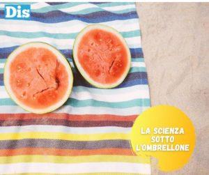 La frutta estiva e i suoi colori – Betacarotene, xantofille e altre molecole
