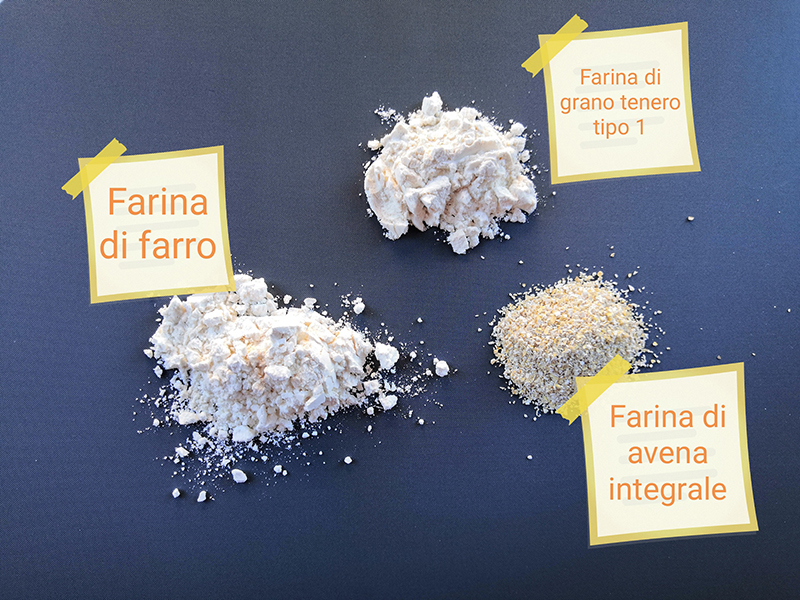 Alcuni tipi di farine per illustrare il nostro articolo sulle ricette senza glutine