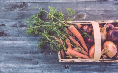 Alimentazione sostenibile – Perché è importante e come ridurre il nostro impatto